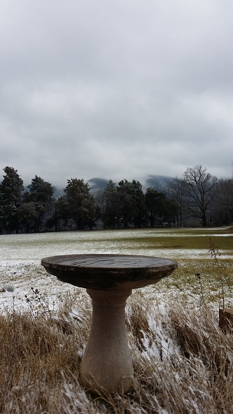 snow and bird bath
