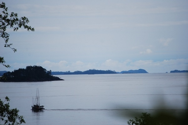 view from deriks house in sitka